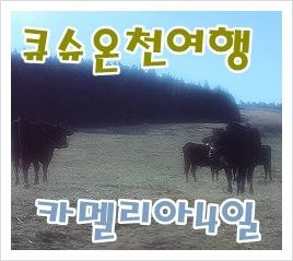 부산출발일본여행/북큐슈 후쿠오카온천여행]4월26일출발 실속일본북 ...